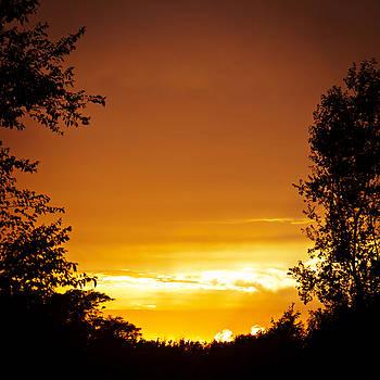Orange Sky 1 by Laura Wiksten