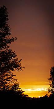 Orange Sky 2 by Laura Wiksten