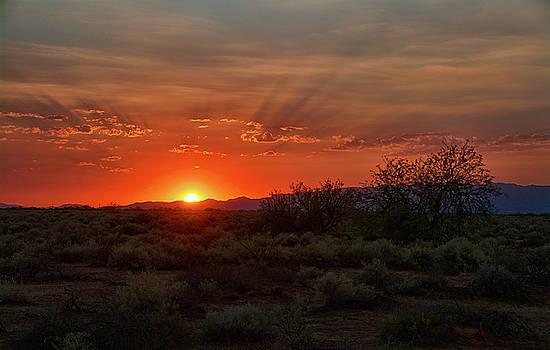 Orange Sky Sunset  by Saija Lehtonen
