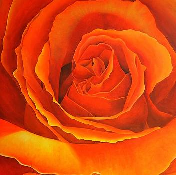 Orange Square Rose by Brandon Sharp