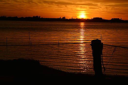 Patricia Twardzik - Orange Sunset Aglow