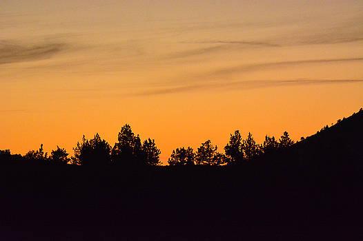 Orange sunset by Linda Larson