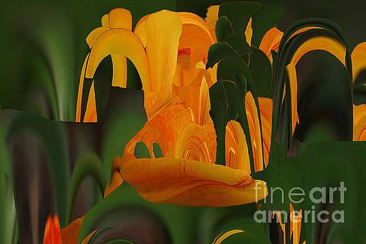 Orange Tulip Abstract by Rick Rauzi
