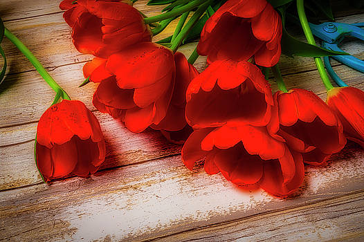 Orange Tulips On Wood Planks by Garry Gay