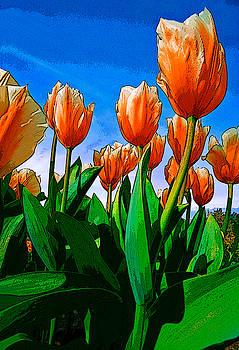 Rick Strobaugh - Orange Tulips