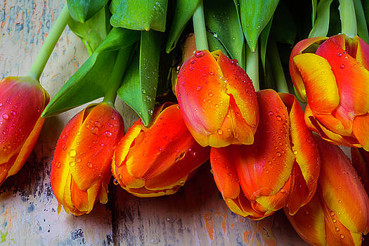 Orange Tulips With Dew by Garry Gay