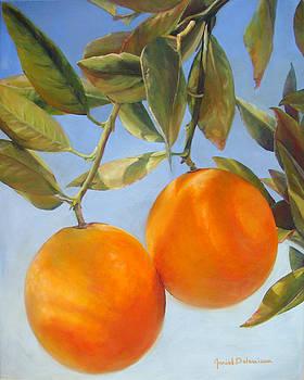 Oranges de Redlands by Muriel Dolemieux