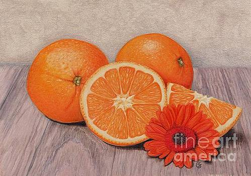 Oranges, Oranges - Everything Orange by Sherry Goeben