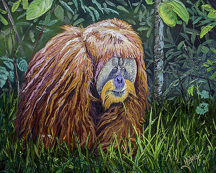 Orangutan 20x16x1.5 in original oil painting on gallery canvas by Manuel Lopez