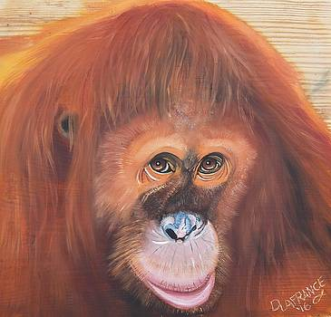 Orangutan by Debbie LaFrance