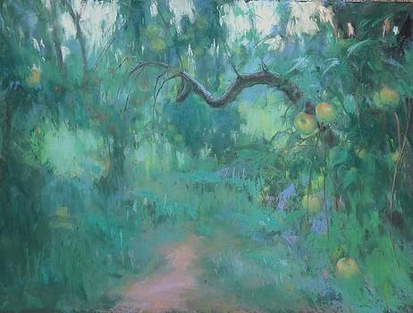 Orchard  by Kelly Lanning Phipps