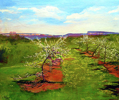 Orchard With Flowering Trees by James Gallagher