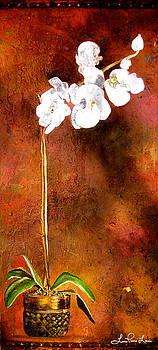 Laura Pierre-Louis - Orchid 4