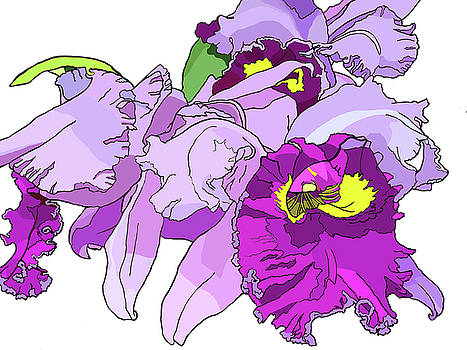 Orchid Cluster by Jamie Downs