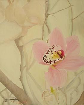 Orchid by Ewald Smykomsky
