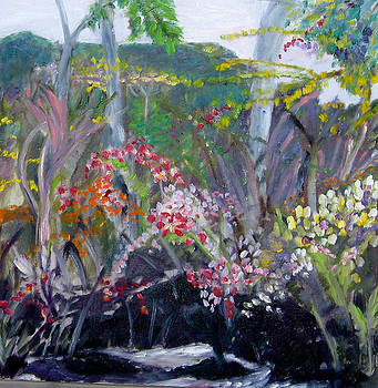 Orchid Jungle by Carolyn Zaroff
