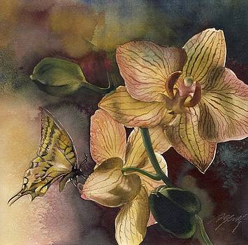 Alfred Ng - orchid with butterfly