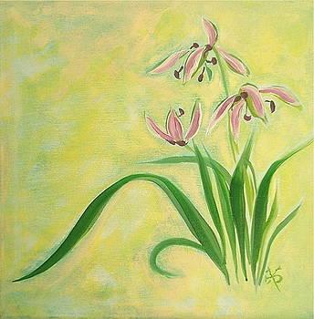 Orchid  by Wonju Hulse