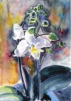 Orchidea 13 by Kovacs Anna Brigitta