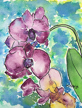 Orchids by Marita McVeigh
