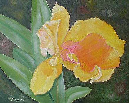 Orchids No 10 by Thi Nguyen