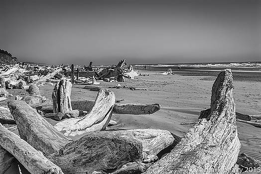 Oregon Beach Driftwood by Mark Peavy