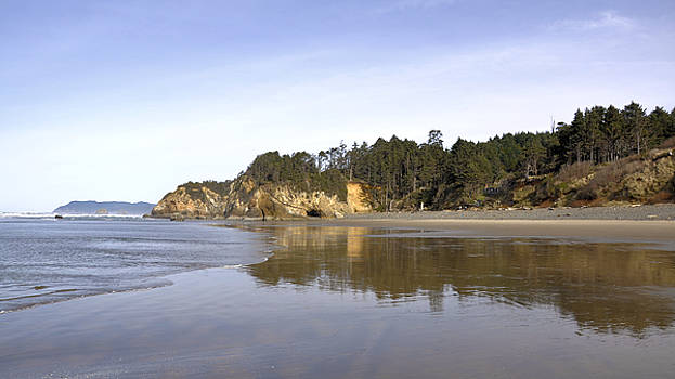 Oregon Beach by Jim Walls PhotoArtist