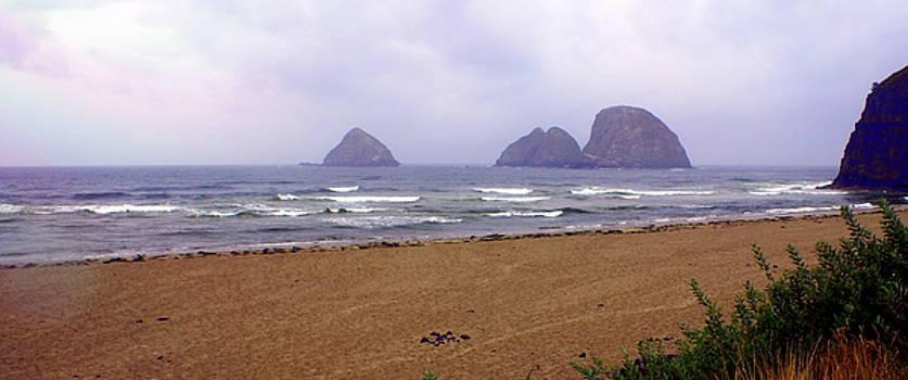 Marty Koch - Oregon Coast 1