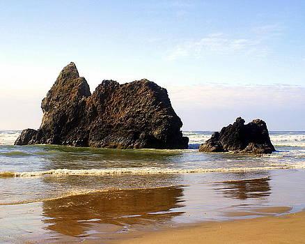 Marty Koch - Oregon Coast 10
