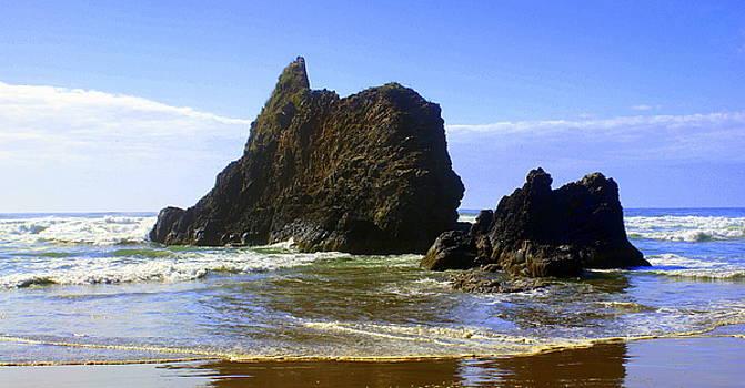 Marty Koch - Oregon Coast 11