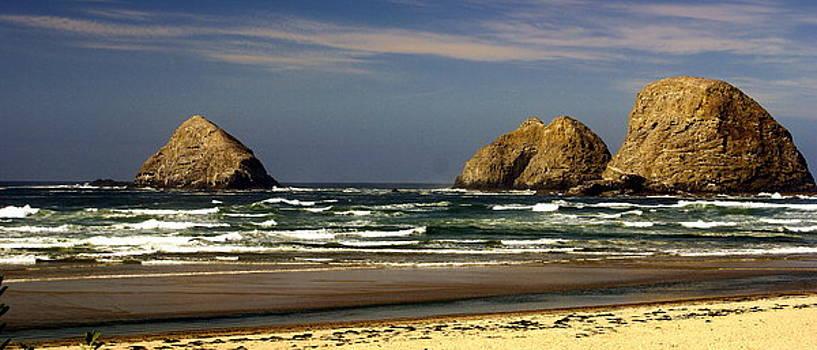 Marty Koch - Oregon Coast 14