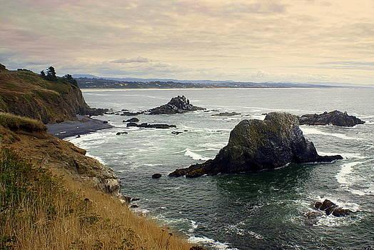 Marty Koch - Oregon Coast 17