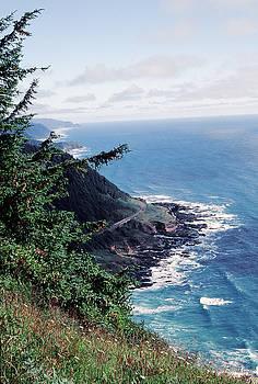 Oregon Coast 2 by Rex E Ater