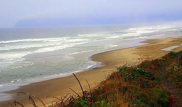Marty Koch - Oregon Coast 3