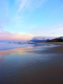 Deahn      Benware - Oregon Coast 4