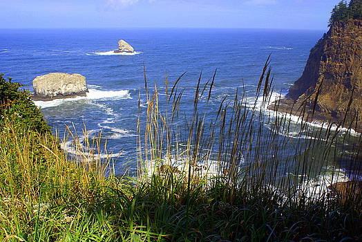 Marty Koch - Oregon Coast 4
