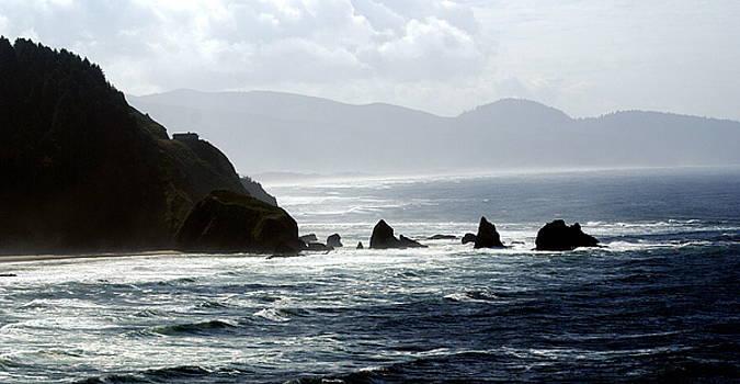 Marty Koch - Oregon Coast 5