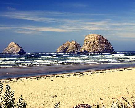 Marty Koch - Oregon Coast 7