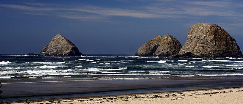 Marty Koch - Oregon Coast 8