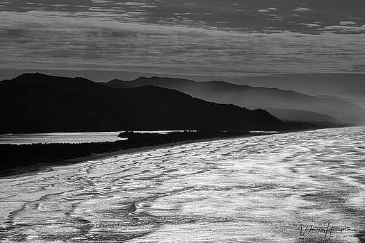 Oregon Coast - 8032,SW by Wally Hampton