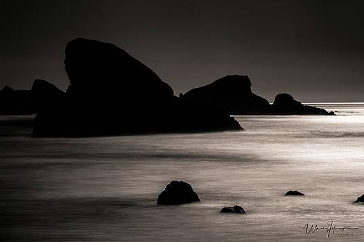 Oregon Coast - 8164,SW by Wally Hampton