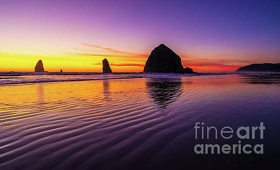 Oregon Coast Cannon Beach Sand Ripples Sunset by Mike Reid