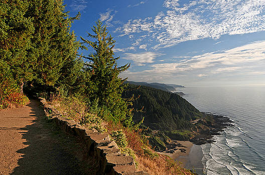 Lara Ellis - Oregon Coast Cape Perpetua View