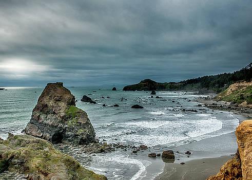 Oregon Coast by Donna Caplinger
