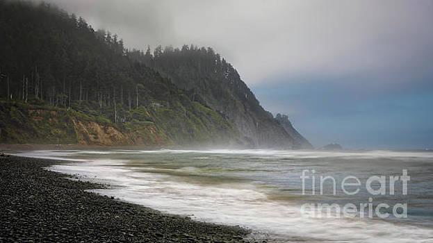 Oregon Coast by Jerry Fornarotto