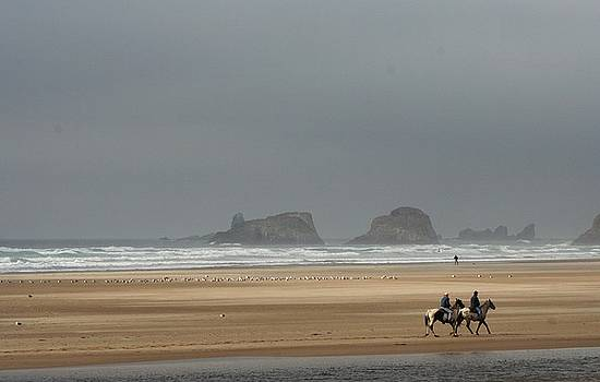 Oregon Coast by Lauren Williamson