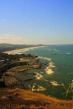 Oregon Coast OO61 by Mary Gaines