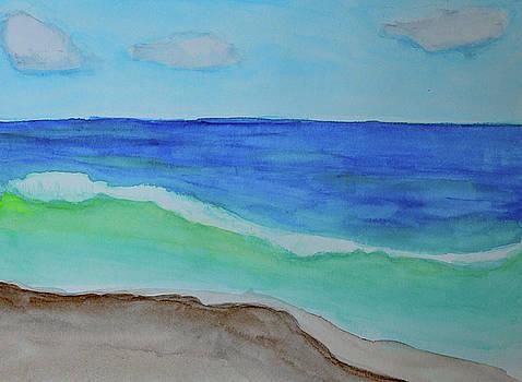 Oregon Coast Surf by Lisa Von Biela