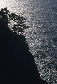 Oregon Silhouette by Lynard Stroud