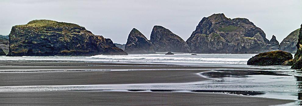 Oregon Tide by L J Oakes